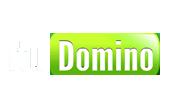 logo itudomino